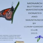 Planting Monarch Butterfly Garden with Girl Scouts